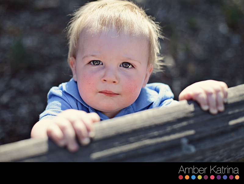 descanso gardens la canada family child photography photographer
