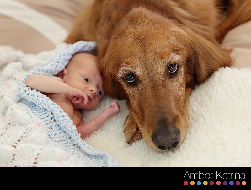 Monrovia Maternity Newborn Dog Family Photography