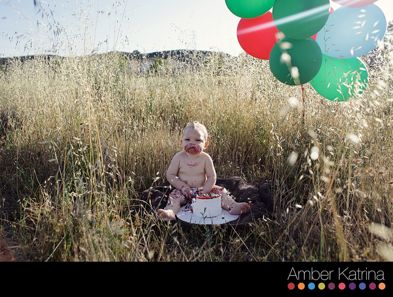 Valencia Wilderness 1 year old birthday family portrait photography