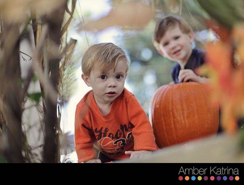 Halloween children carving pumpkins costumes wizard of oz